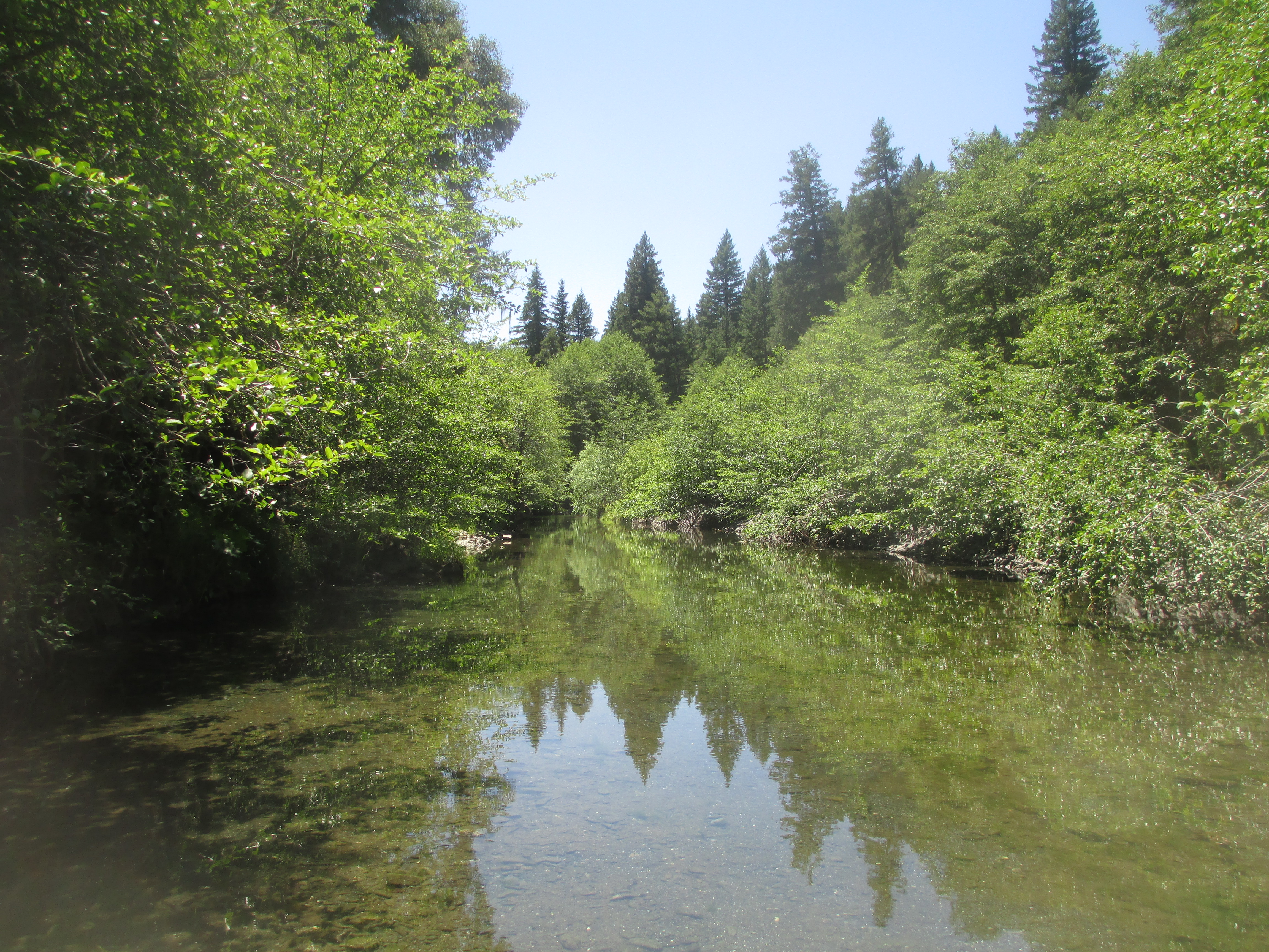 thirteen pictures of camping in humboldt county | redneck romance writer